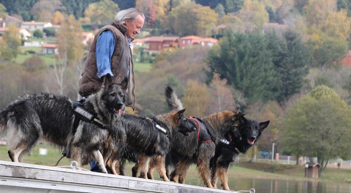 nos-chiens