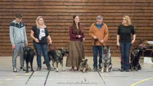 le club de race de l'Altdeutscher Schäferhund UCFAS